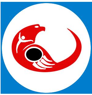indigenous affairs icon